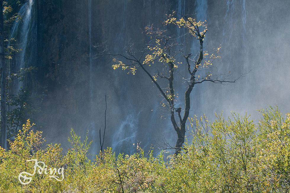 Einsamer Baum vor dem Galovac-Wasserfall