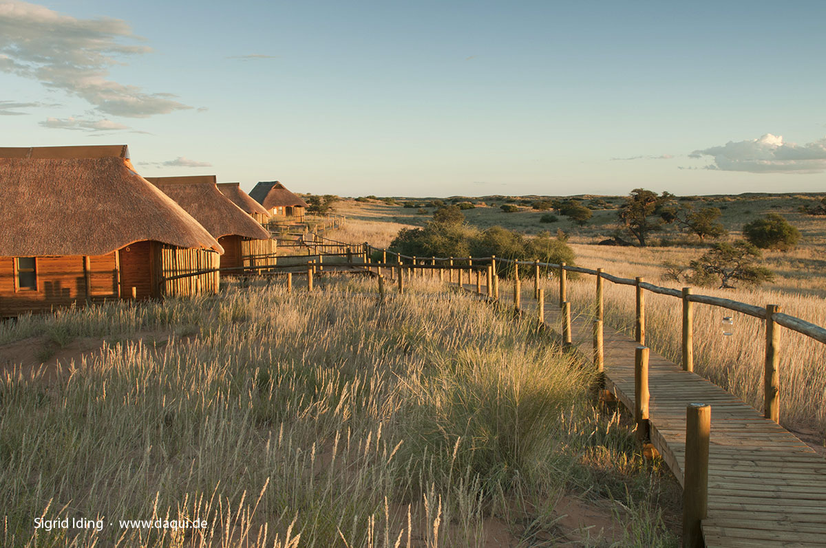 Rooiputs Lodge-4