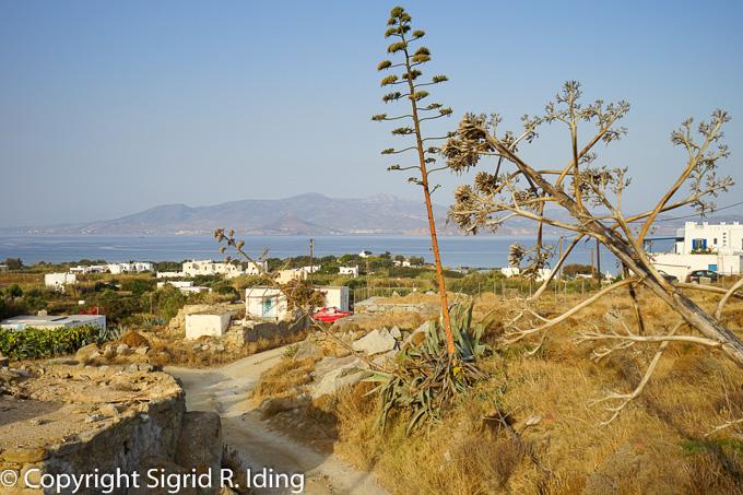 Letzter Weg zum Strand von Agia Anna