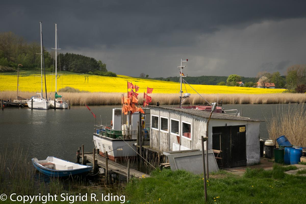 Fischerboot in Seedorf