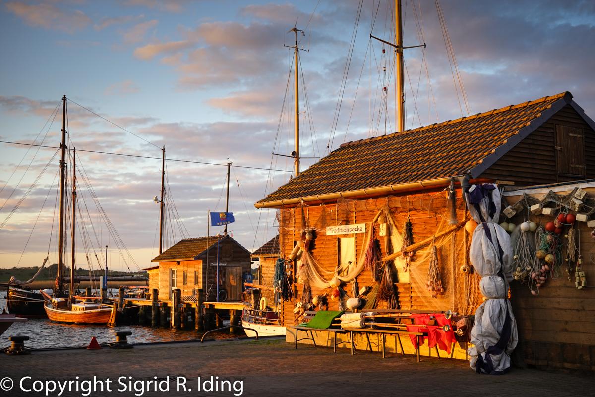 Gager Hafen-09283