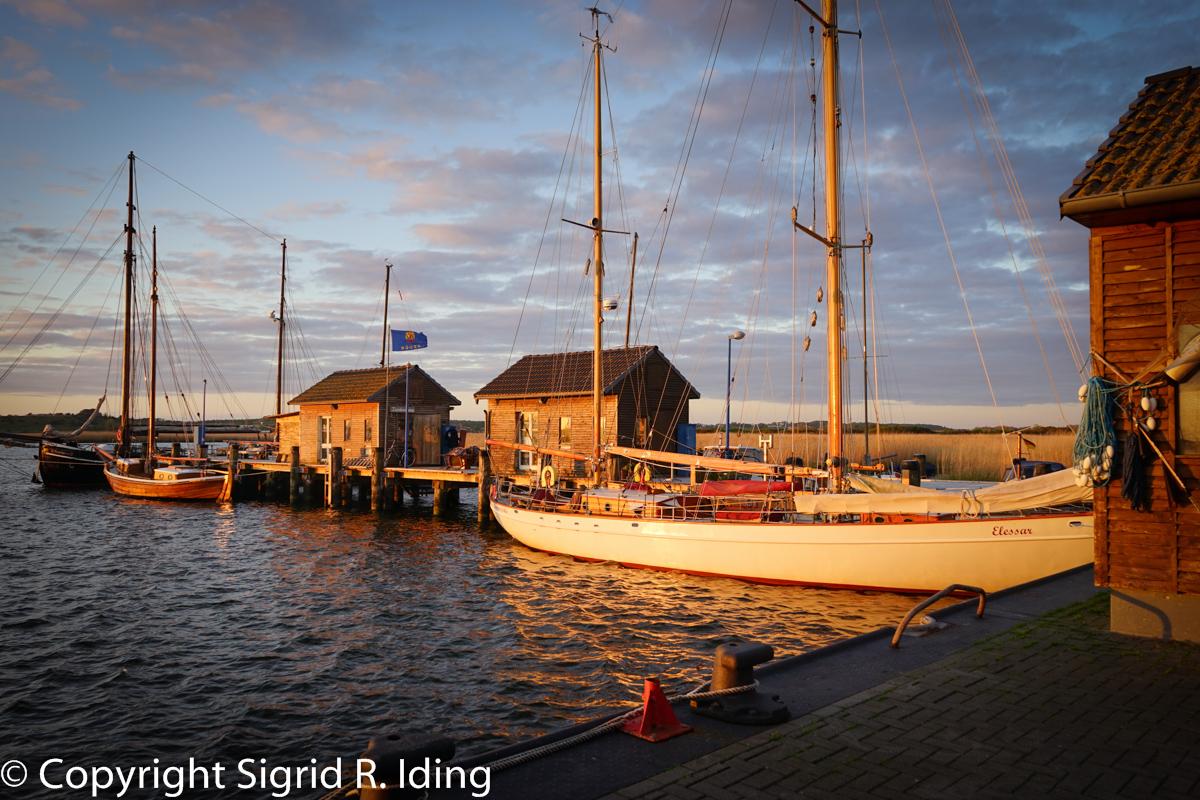 Gager Hafen-09285
