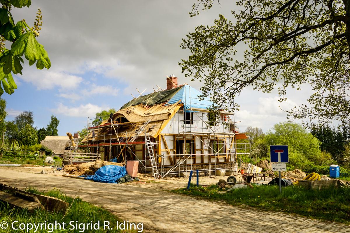 Ein neues Reetdach entsteht.