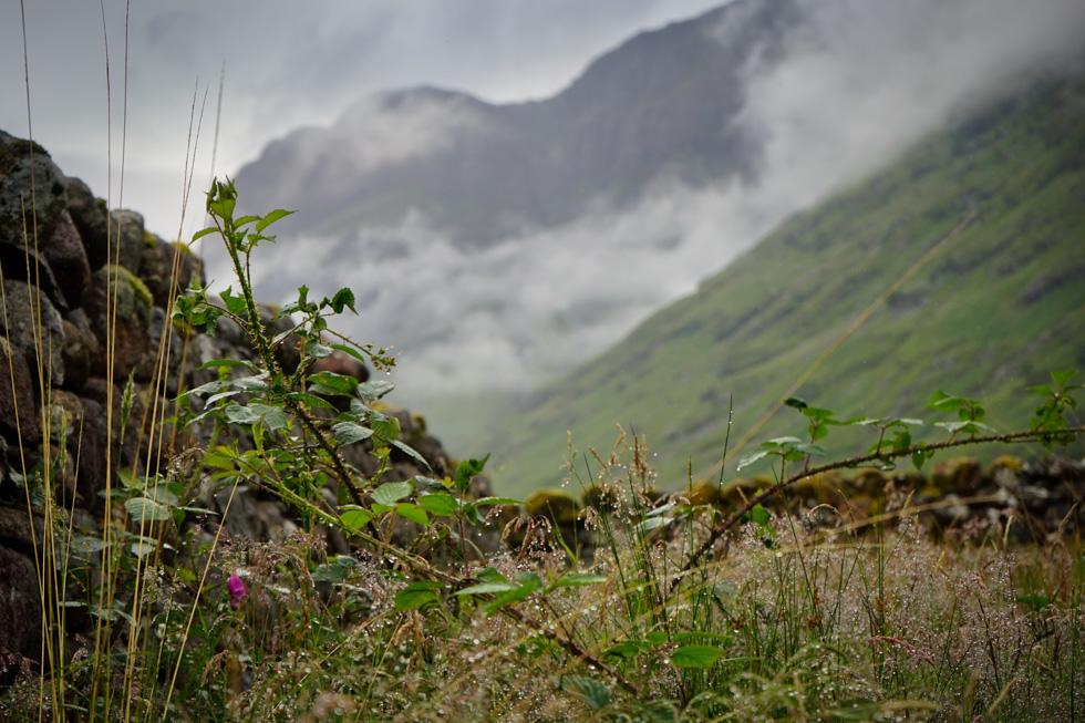 Highlands-00724