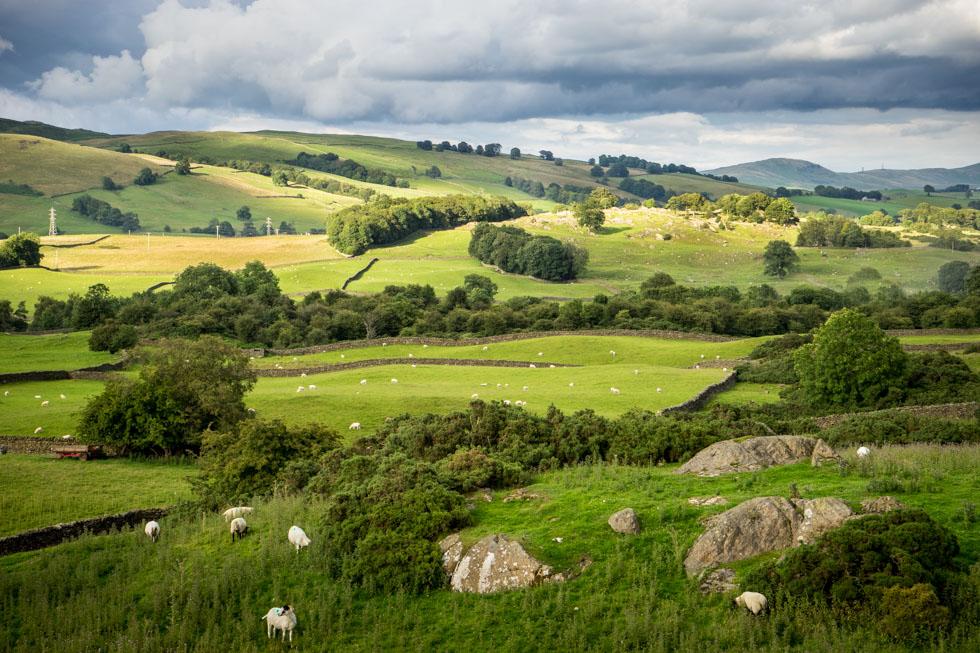 Lake District 29-07-00915
