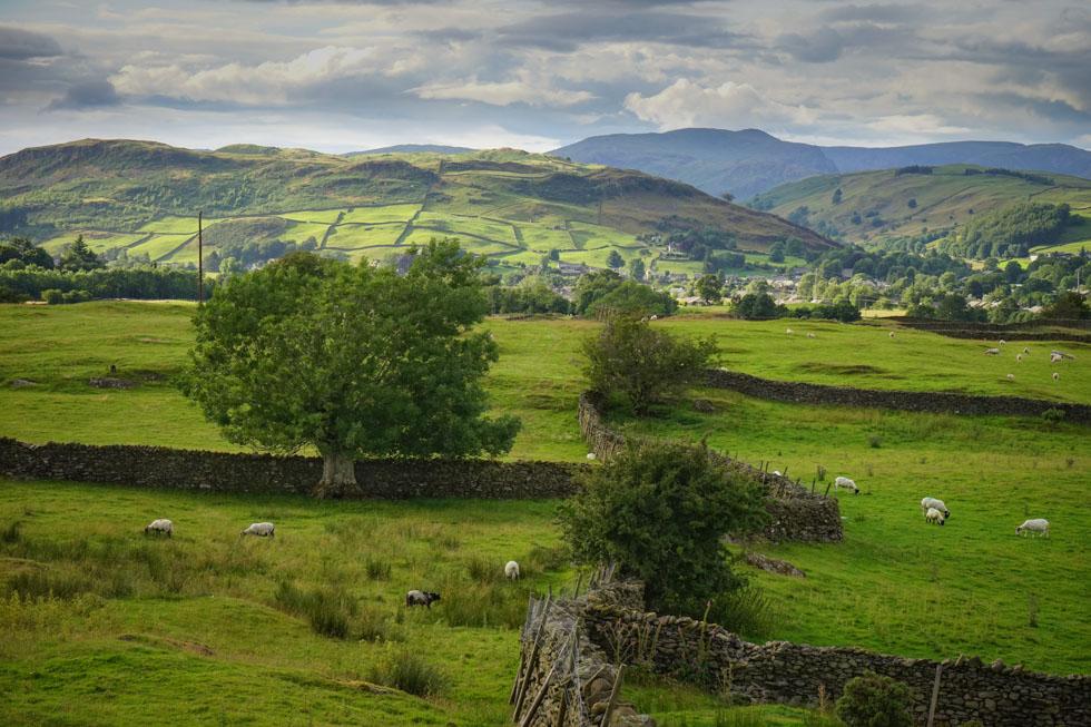 Lake District 29-07-00921