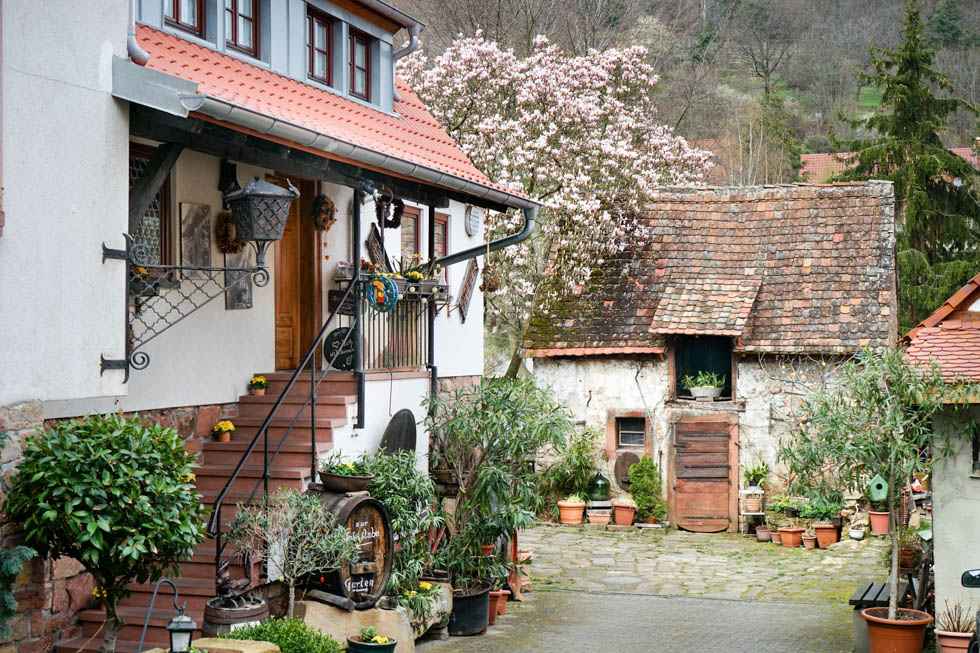 Hambach Weingut