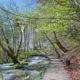 Plitvice National Park im Frühling