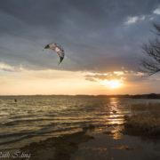 Kitesurfer am Chiemsee