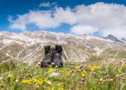 Wanderschuhe auf Bergwiese im Gran Sasso