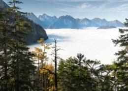 Tannheimer Berge bei Hochnebel