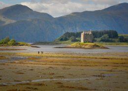 Reiter am Castle Stalker Schottland