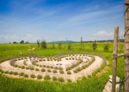 Aus Lavendelpflanzen gestaltetes Herz auf dem Platz der Begegnung oberhalb von Gstadt am Chiemsee