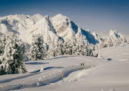 Skilangläufer auf Loipe auf Plätzwiese Dolomiten