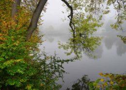 Bäume mit Herbstlaub am Ebersberger Klostersee. Nebel liegt über dem See