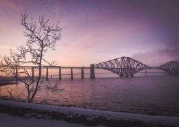 Baum vor der Forth Rail Bridge Queensferry im Zwielicht