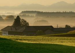 Voralpenlandschaft am Morgen. Mit Nebel