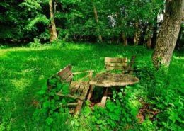 Holzbank und Holztisch im verlassenen Garten in Kirchseeon