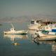 Boote im Hafen von Agia Anna Naxos