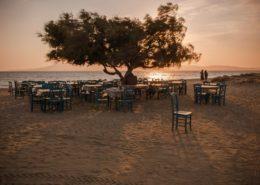 Taverna Paradiso Naxos mit Tamariske