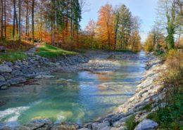 Herbst in Nussdorf