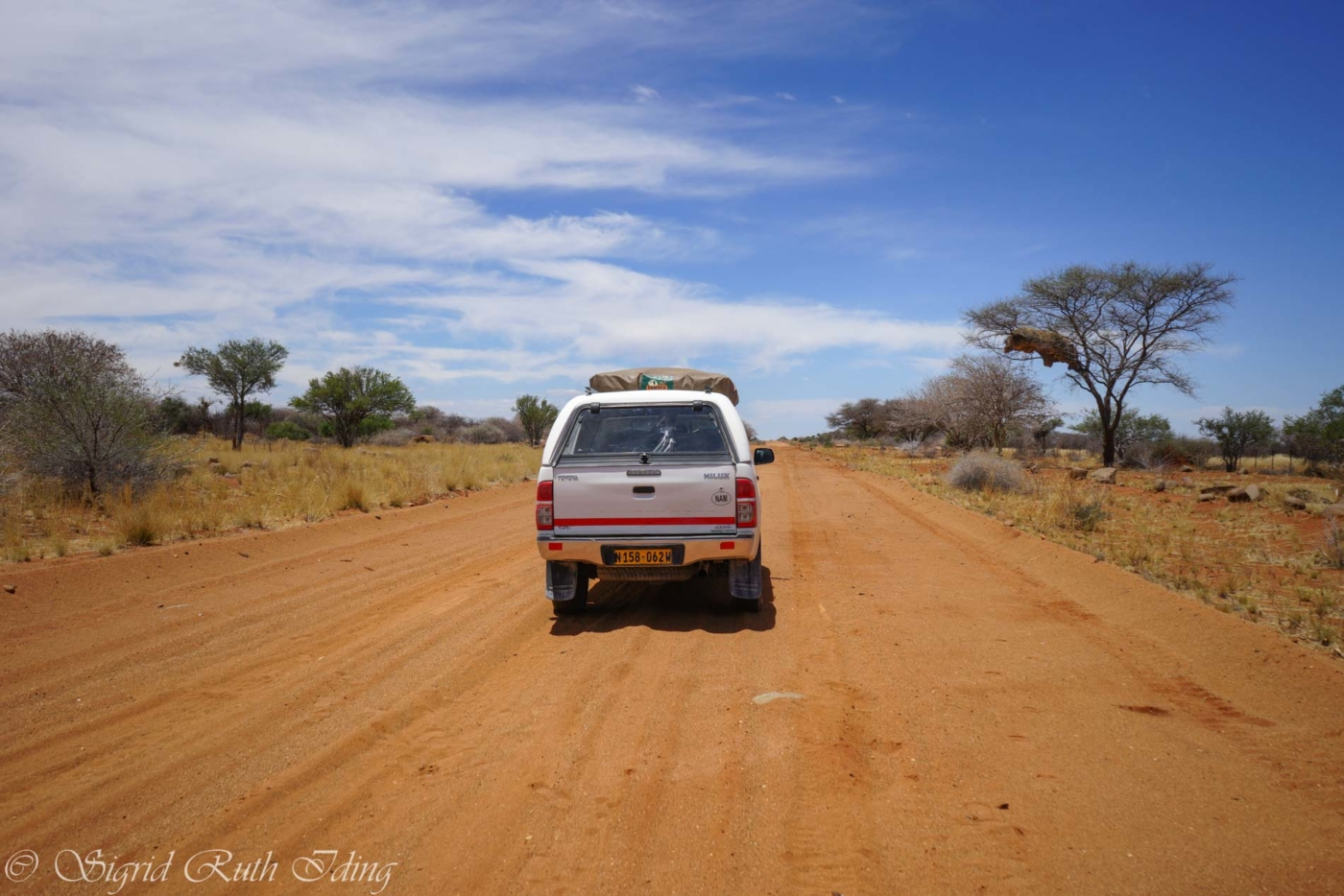 Rote Sandpad D2110 in Namibia